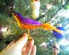 Purple_bird